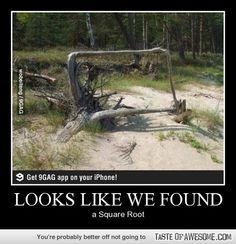 The original square root.