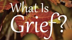 If you are experiencing grief for the first time, you will likely feel overwhelmed by the complex set of emotions that seem to override your rational mind. While this is extremely unpleasant, there isn't anything wrong with you. This is grief. Dealing With Grief, Stages Of Grief, Supportive Friends, Grief Support, The Lives Of Others, Expressive Art, Bereavement, Feeling Overwhelmed, Anxious