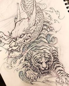 Dragon and tiger sketch. #chronicink #asiantattoo #asianink #irezumi #tattoo #sketch #illustration #drawing #dragon #tiger #irezumicollective