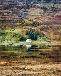 Loch Damh, Scotland