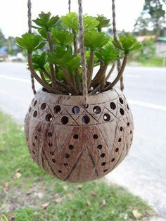 1 Pc Small Size Natural Coconut Shell Hanging Planter Pot Busket pot by Handmadebyyucrack on Etsy Decorative Gourds, Hand Painted Gourds, Diy Home Crafts, Garden Crafts, Coconut Shell Crafts, Pineapple Flowers, Coconut Leaves, Bamboo Crafts, Gourd Art