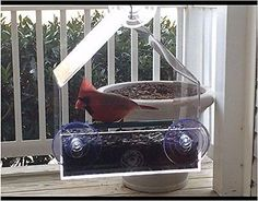 Bird Feeder For Window