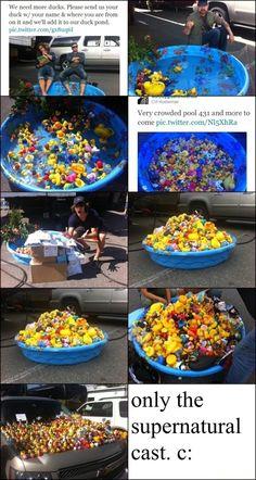 Duck pond :D