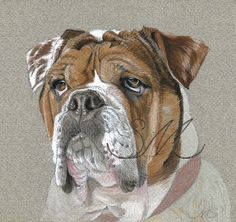 Hey, I found this really awesome Etsy listing at https://www.etsy.com/listing/182848129/english-bulldog-print-from-original