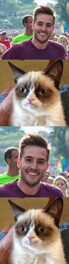 Ridiculously photogenic guy makes grumpy cat not grumpy..in a parallel universe!!!!! Grumpy cat will be forever grumpy! But look at his face :) HE LOOKS LIKE RANBIR KAPOOR GUYS.