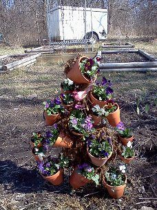 A trellis form with wired clay pots planted with violas.