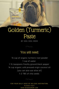 Natural Pain Relief for Dogs: 5 Supplements That May Help Golden Paste For Dogs, Medication For Dogs, Organic Turmeric, Turmeric Health, Oils For Dogs, Dog Health Care, Natural Pain Relief, Dog Care Tips, Pet Care