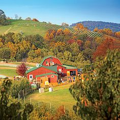 Take an Apple Country Road Trip this fall! A hard-core hard cider revival in Virginia's apple country is casting a new (dappled) light on the region.