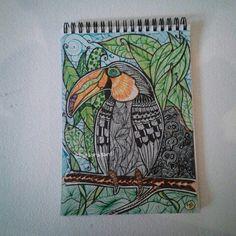 #tucano #doodleart  ©barbara santi