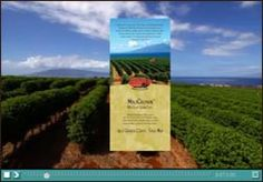 Enter a description here to use in the meta description tag for the home page. Hawaiian Coffee, Coffee Tasting, Coffee Branding, Maui Hawaii, Tropical, Tours, Vacation, Vacations, Holidays Music