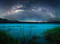 Mysterious Mexican Marsh ... by Fabien Polly | GuruShots