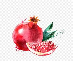 Watercolor painting Fruit Drawing Illustration - Hand-painted pomegranate png is about is about Superfood, Apple, Food, Pomegranate, Accessory Fruit. Watercolor painting Fruit Drawing Illustration - Hand-painted pomegranate supports png. You can download 750*750 of Watercolor painting Fruit Drawing Illustration - Hand-painted pomegranate now.