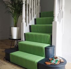 From Erica Davies - painted stairs and bright carpet 💚