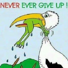 Frog strangling bird - Never ever give up!