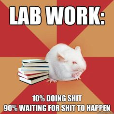Lab work: 10% doing shit90% waiting for shit to happen