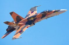 A Canadian Air Force F-18 Hornet.
