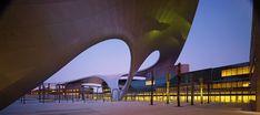 undulating canopy unites zayed university by BRT architekten
