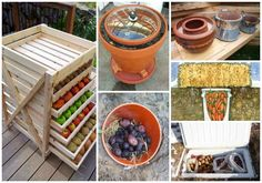 enjoy fresh homegrown produce when they're not in season? One way is with a root cellar.It is with the use of root cellars that our ancestors…