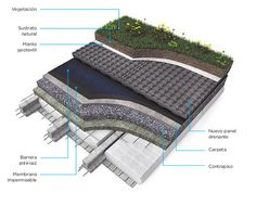 Green Roof Research Green Architecture, Sustainable Architecture, Architecture Details, Sponge City, Green Roof System, Commercial Landscaping, Hospital Design, Roof Detail, Architectural Section