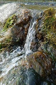 湧き水。こういうのを見ると水が飲みたくなる。