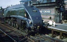 Mallard at Kings Cross Diesel Locomotive, Steam Locomotive, Steam Trains Uk, Euston Station, Uk Rail, Steam Railway, Train Art, London History, British Rail