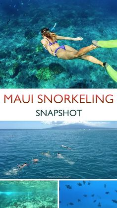 Snorkeling is the perfect activity for almost all visitors to Maui, from beginners to those who have snorkeled many times in exotic locations around the world. #mauisnorkeling #maui #snorkeling #snorkel #ocean #mauihawaii #snorkelspots Lanai Island, Island Beach, Big Island, Hawaii Vacation Tips, Kapalua Bay, Ocean Activities, Best Snorkeling, Maui Travel, Maui Hawaii