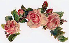 Pink Roses, Victor Pasmore pink roses, love the form Vintage pic of child Vintage Diy, Vintage Rosen, Decoupage Vintage, Vintage Ephemera, Vintage Postcards, Vintage Images, Victorian Flowers, Antique Roses, Vintage Flowers