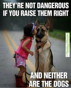 Funniest_Memes_they-are-not-dangerous-if-you-raise-them-right_6949.jpeg