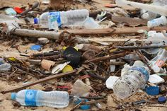 Experts at Australia's first conference on plastic pollution in oceans shared numerous solutions to tackle one of the most intractable environmental challenges. Environmental Challenges, Plastic Pollution, Plastic Waste, Plastic Bottles, 5 Ways, War, Bamboo Products, Crafts, Sustainability