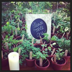 Rustic wedding favors herbs country organic