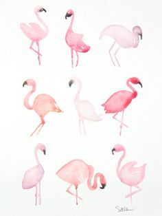 pink, flamingo, and animal afbeelding Watercolor Animals, Watercolour Painting, Painting & Drawing, Watercolours, Flamingo Art, Flamingo Painting, Illustration Mode, Flamingo Illustration, Plant Drawing