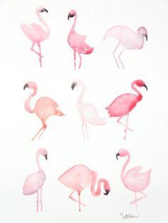 Rose Toujours - Flamingo aquarelle