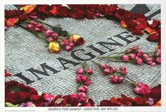A great poster of the John Lennon Strawberry Fields Memorial in New York's Central Park decorated with Flowers of Peace! Fully licensed. Ships fast. 24x36 inches. Need Poster Mounts..?