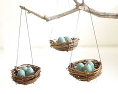 Christmas Ornaments Nest Blue Robins Eggs Tree di Fairyfolk