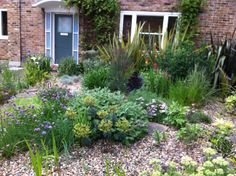 A pretty front garden in Islington, London, while I was walking with a friend