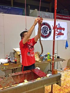 Young man getting to skin his own rattlesnake at the 2014 Rattlesnake Roundup in Sweetwater Texas.