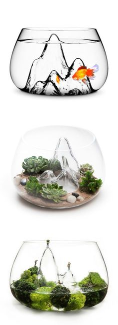 Glasscape Fishbowl by Aruliden. This beautiful bowl can be used as a planter, fishbowl, or to store and display your stuff.