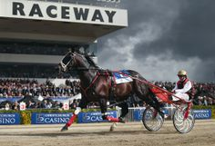 Champion New Zealand driver, Ricky May, aboard the amazing Terror to Love.