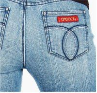 jordache and sassoon jeans