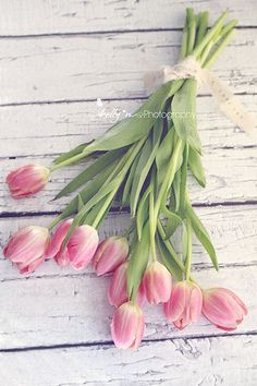 """Love Tulips""- Pretty pink bouquet of tulips wrapped with a love ribbon. Print by kelly*n photography"