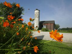 local attraction: Check out Sandusky, Ohio's Hermes Vineyards & Winery Couples Things To Do, Romantic Things To Do, Free Things To Do, Fun Things, Ohio Attractions, Sandusky Ohio, Weekend Vacations, The Buckeye State, Cedar Point
