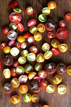 Different species of tomatoes