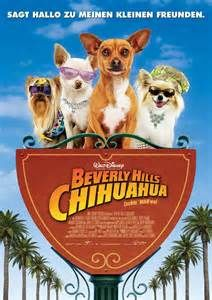 beverly hills chihuahua - Yahoo Image Search Results
