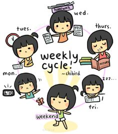 Turns into a yearly cycle.