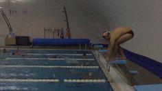Swim|2