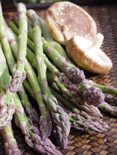 Thai stir-fried asparagus and shiitake with oyster sauce. Ingredients: oil, garlic, asparagus, shiitake, oyster sauce, soy sauce, sugar, pepper, water or chicken stock, cornstarch. Recipe from Pranee's Thai Kitchen.