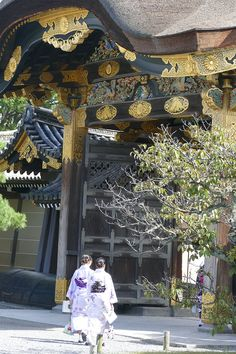 Geishas at Nijo Castle Kyoto Ginkakuji, Ryoanji, Nijo Castle, Fushimi Inari Taisha, Asia Travel, Travel Tips, Imperial Palace, Buddhist Temple, Geishas