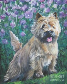 cairn terrier dog art CANvas print of LA Shepard painting Cairn Terriers, Terrier Dogs, Terrier Breeds, Dog Breeds, Cairns, Dog Portraits, Portrait Art, Dog Paintings, Dog Art