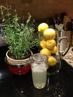 ... Lavender Infused Lemonade on Pinterest | Lemonade, Lavender and