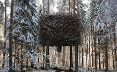 tree hotels!! [sweden]  *this is what i was talking about, @Donna Rimbo.